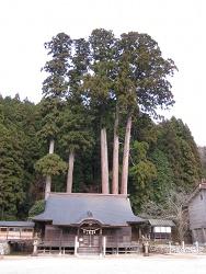 中和神社遠景