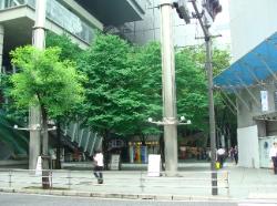 東京国際フォーラム入り口
