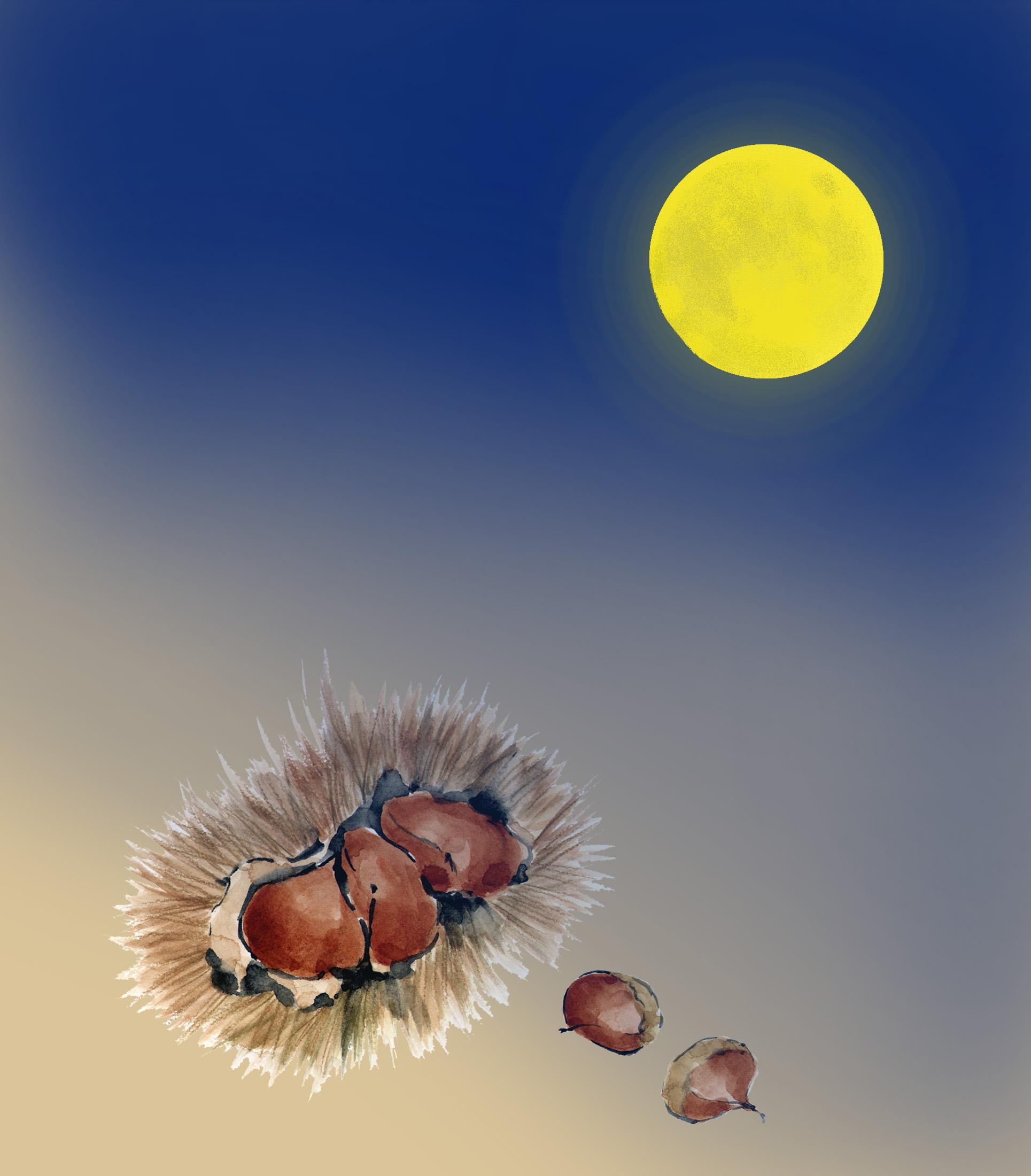 栗名月 (PIXTA)